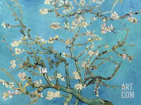 Branches d'amandier en fleurs, Saint-Rémy, 1890 Reproduction d'art