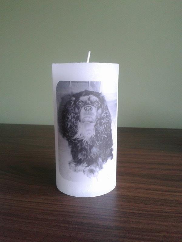 Kaars gemaakt met foto van overleden hondje, voor lieve collega.  ** Techniek: foto op kaars smelten **