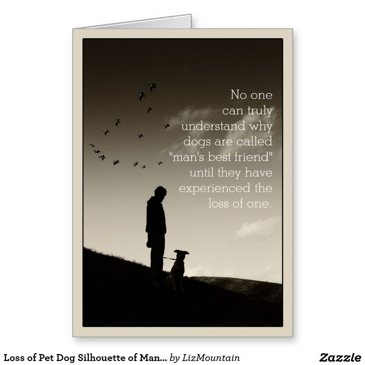7 best sympathy cards dogs images on pinterest doggies dogs and kindred spirit sympathy cards loss of pet dog silhouette of man and dog greeting card altavistaventures Images