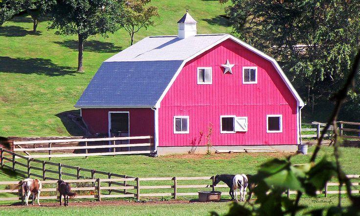 Pink Barn in the Summer Photograph - Pink Barn in the Summer Fine Art Print ...    fineartamerica.com