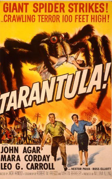 Tarantula (1955) de Jack Arnold. Une tarentule géante sème la terreur ! #ScienceFiction #film horreur SciFi spider SciFi vintage araignée