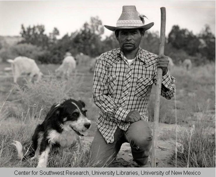 Benson, Navajo Sheepherder and Dog By: Marmon, Lee