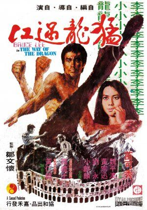 Way-of-the-dragon-poster.jpg