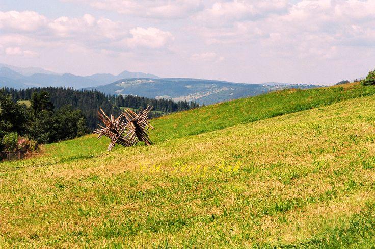 Bukowina Tatrzańska to wspaniałe miejsce na wypoczynek. http://salvadofotografia.blogspot.com/2013/11/bukowina-tatrrzanska.html