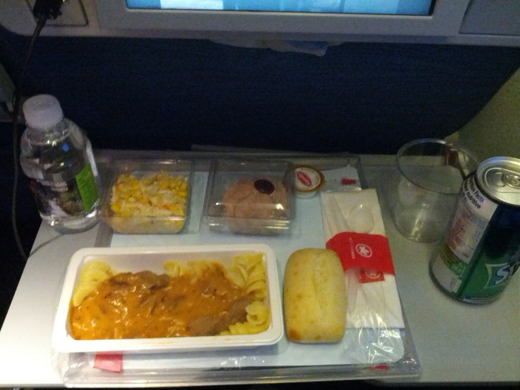 Air Canada 874, Montreal-Trudeau - Frankfurt (economy)  Stewed beef with pasta and mushrooms, cabbage salad, chocolate mousse