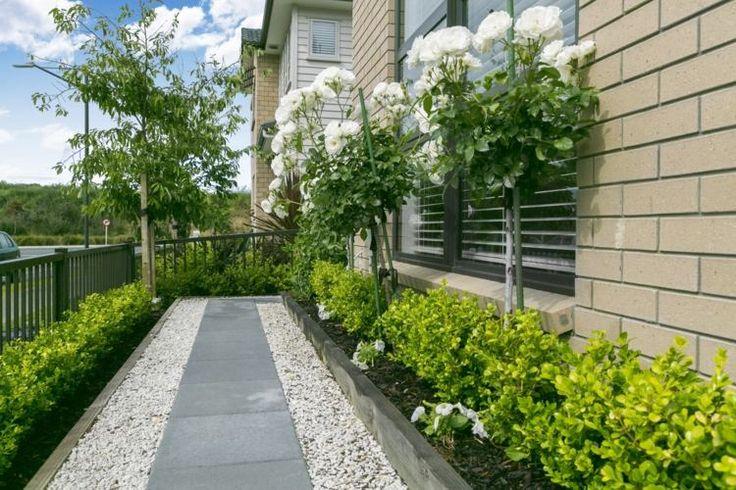 Pflegeleichter Vorgarten mit frünen Pflanzen