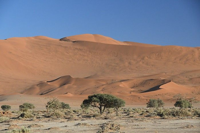 The majesty of Namibia's Sossusvlei  dunes #NamibSandSea