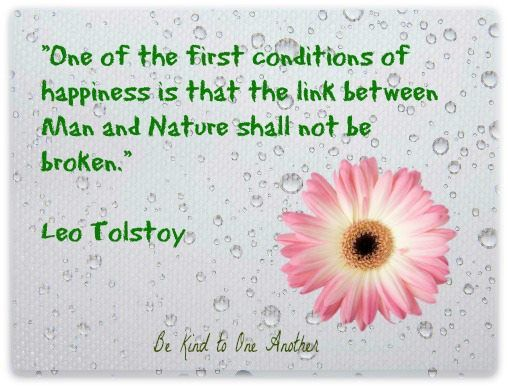 Http Noblequotes Com: 1000+ Images About Leo Tolstoy On Pinterest