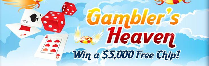 Take a Trip to Gambler's Heaven with CoolCat Casino