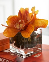Great idea for an easy, yet stunning arrangement.