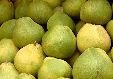 Pomelo - How to Prepare Pomelo Fruit (+ Nutrition Facts)
