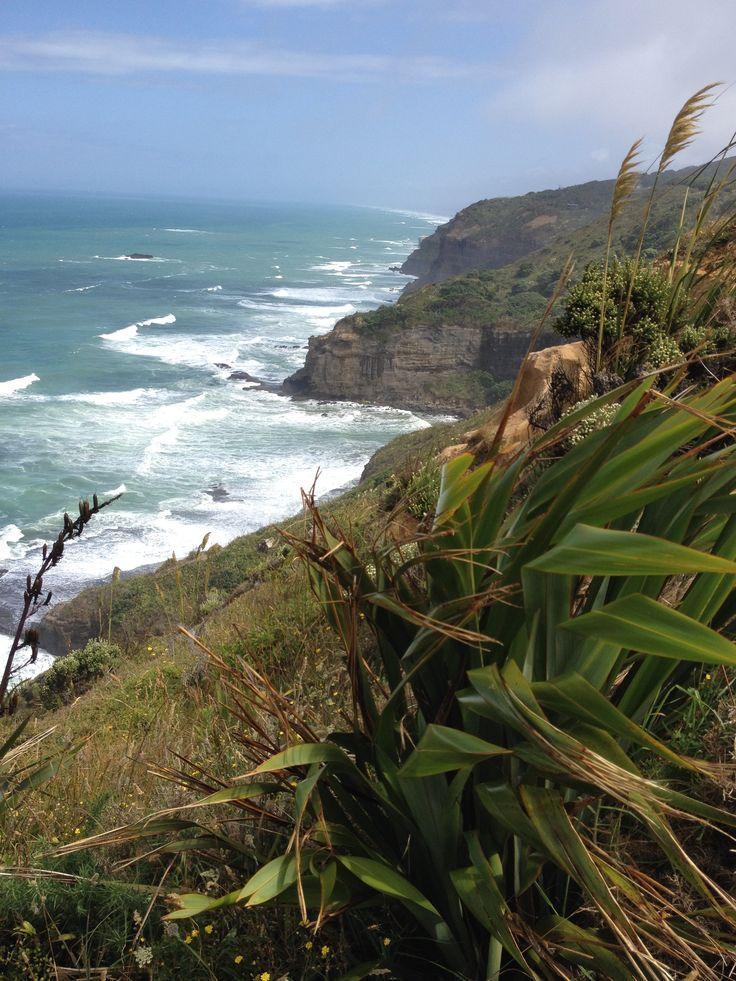 Muriwai Coast - Te Henga Walk, Auckland  www.wooree.co.nz