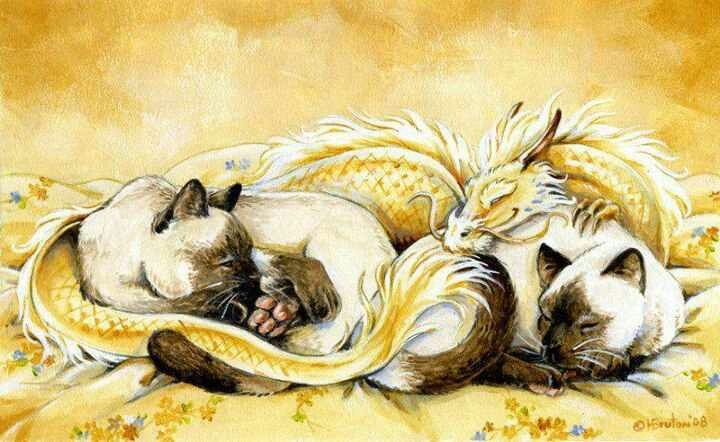 Dragon and kittens