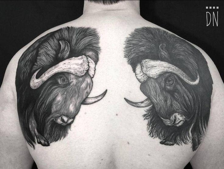 Tatuaje de dos búfalos en la espalda (el de la izquierda sin curar, el de la derecha curado).