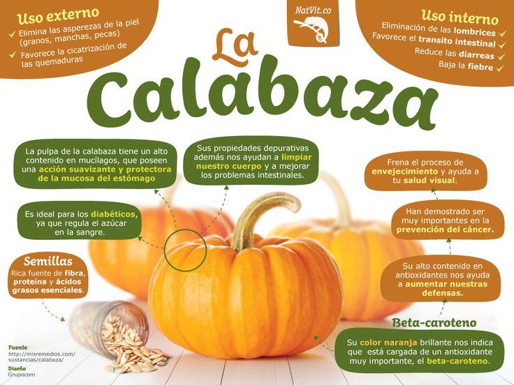 CONOCE LA CALABAZA! (calabazas, calabacines y auyamas)  La calabaza es fuente de…