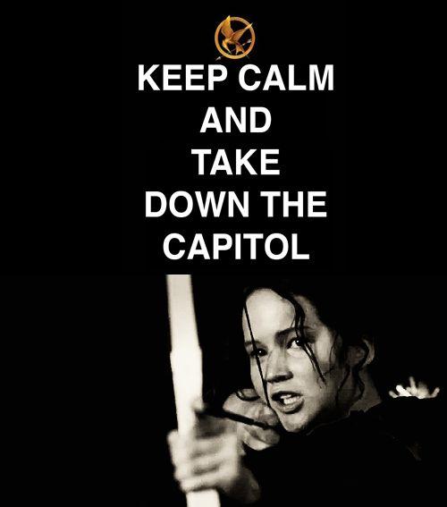 Keep+Calm+Hunger+Games+Wallpaper   Keep Calm - The Hunger Games Photo (24963277) - Fanpop fanclubs