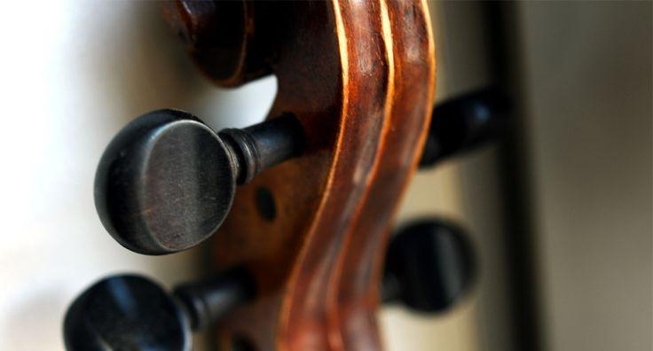 violin keman macro product ürün