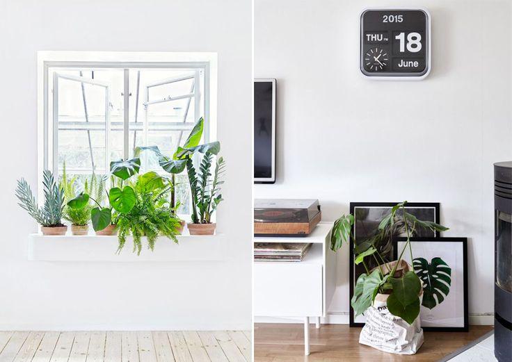 Die besten 25+ Bureau exotique Ideen auf Pinterest | Graues ...