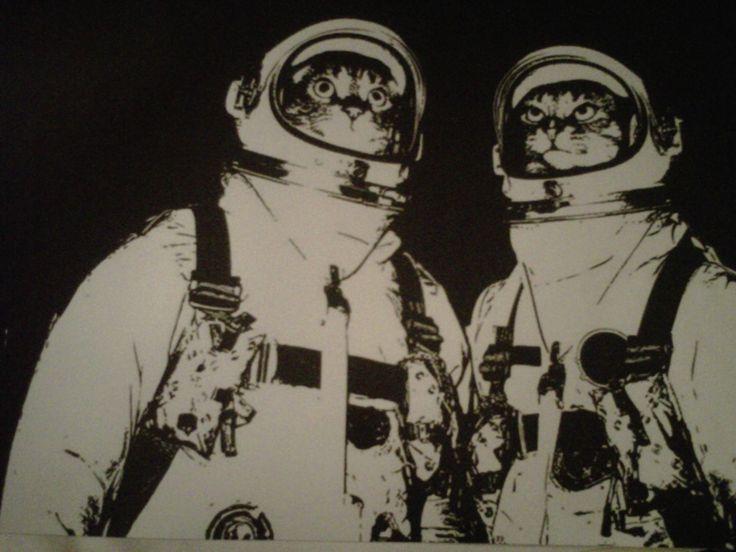 Astronaut+cats+1.jpg 1.600×1.200 pixel