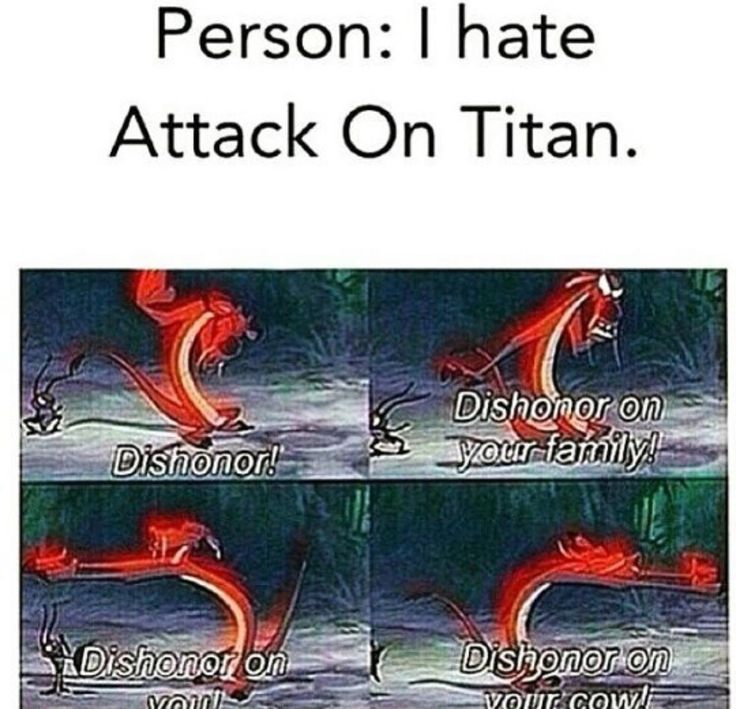 Shingeki No kyojin : this used to be me but now when anyone doesn't like shingeki no kyojin this is what I say