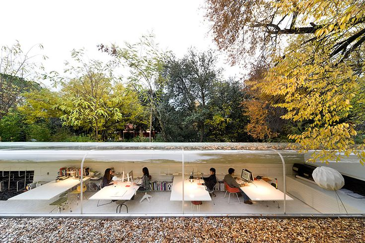 Office In Madrid Lets Employees Feel Like They're Working in the Woods via Bored Panda selgas-cano-office-madrid-7