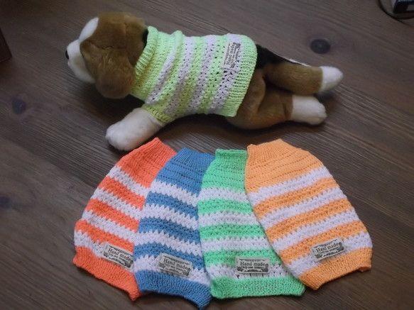 ウール100%の毛糸を使って、手編みで仕上げた小型犬用のポーダー柄の、セーターです。寒い冬にも元気がでそうな 5色で作ってみました。ピンク、 オレンジ、 イエ...|ハンドメイド、手作り、手仕事品の通販・販売・購入ならCreema。