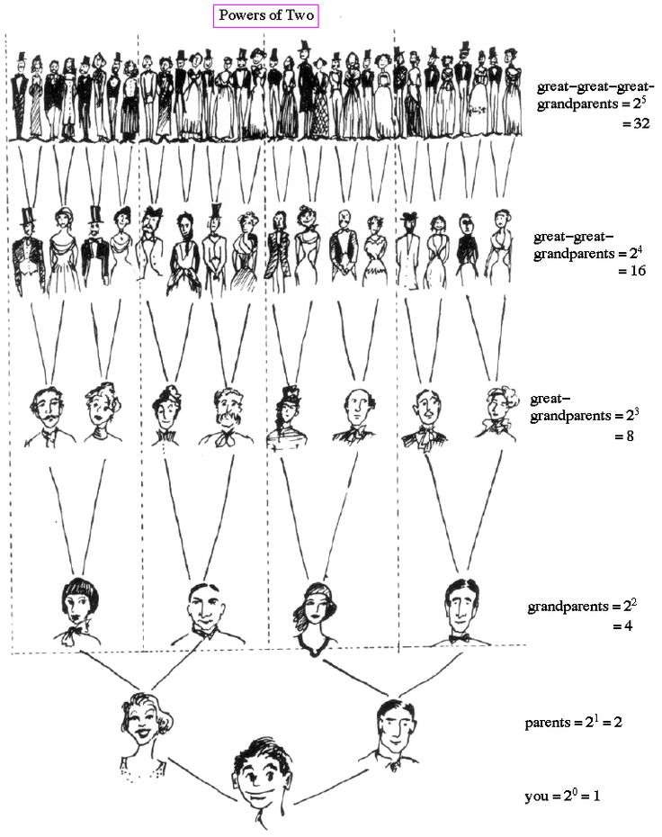 family tree math-- I like this because it makes me realize