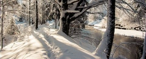 Winter Ruhpolding TVB