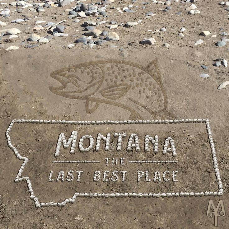 """141 Likes, 1 Comments - Montana Treasures (@montana_treasures) on Instagram: """"Montana The Last Best Place, rock sculpture, created by Bozeman artist"""" When it comes to fishing for trout, Montana is a pretty special place. As an icon, trout show up in all sorts of public art and designs. Locate hiking and fly fishing destinations in the southwestern part of the State, on Montana Treasures' Explore pages."""