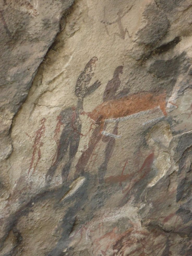 Bushmen Paintings on our Hikes
