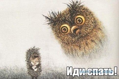 спящая сова картинки: 23 тыс изображений найдено в Яндекс.Картинках