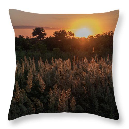Natalya Antropova Throw Pillow featuring the photograph Sunset In The Steppe by Natalya Antropova #NatalyaAntropovaFineArtPhotography#ArtDecor#HomeDecor#pillow