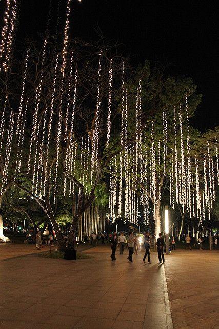 Ayala Triangle Gardens - Makati