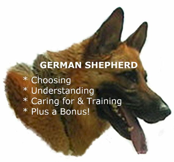 German Shepherd: GUIDE TO TRAINING GERMAN SHEPHERD DOGS!  http://dunway.us/kindle/html/german_shepherd.html
