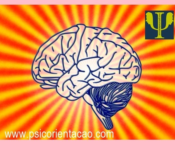 psicologa comportamental, palestras psicologia, paginas de psicólogos, psicóloga sp