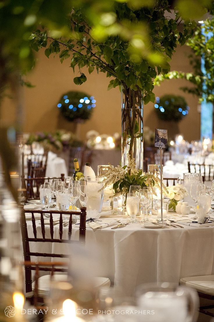 Extravagant and enchanting wedding reception styling. Tiffany chairs, vases overflowing with tree branches, candles and a croquembouche