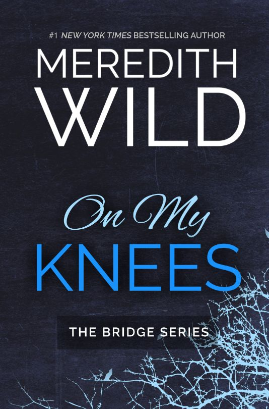 49 best the bridge series images on pinterest meredith wild the writing flows like music beautifully written with characters that feel so real fandeluxe Images