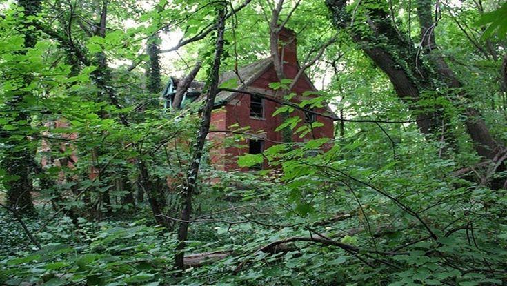 Les vieux bâtiments abandonnés de l'île North Brother  New-York