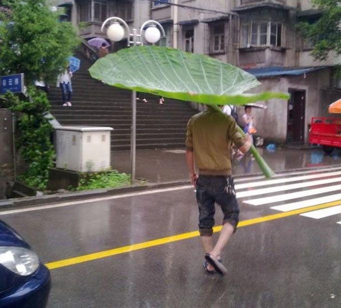 傘 | Sumally (サマリー)