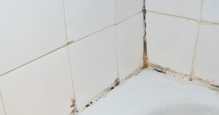 Je douche is natuurlijk een vochtige plek. En waar vocht is, is schimmel... Zo wordt je douche opnieuw kraaknet!
