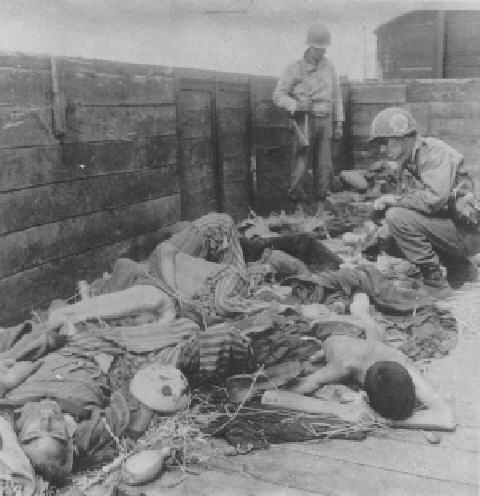 The Dachau Gas Chambers  Photograph 46    Bodies discovered in railway cars by American troops. (Imperial War Museum, London.)