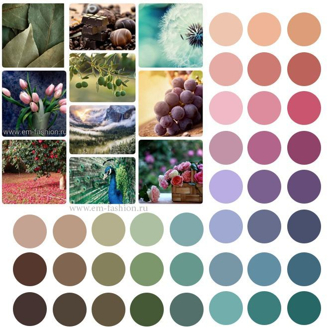 Soft Summer palette. палитра цветотипа мягкое лето