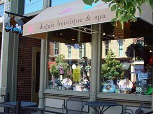 Doggie Boutique and Spa in Denver, Colorado