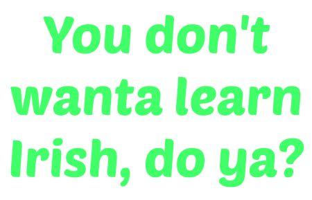 Irish slang  http://elandbabya.com/2015/01/speak-irish-beginners-guide-irish-slang/
