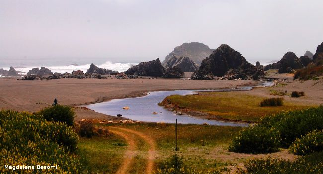 Chile's remote Puertecillo: surf, sun, beaches and nature walks