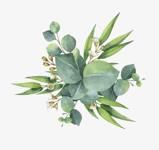 Green Watercolor Wreath