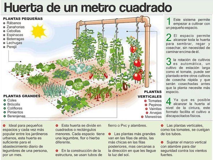 Horta em 1m2 - Falta de espaço não é mais desculpa! O Serpar, Serviço de Parques de Lima, no Peru, criou passo-a-passo que mostra como é possível fazer uma horta em casa, ocupando apenas 1 m².