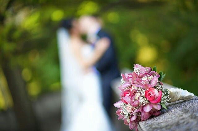 Love our wedding flowers  roses pink bride and groom