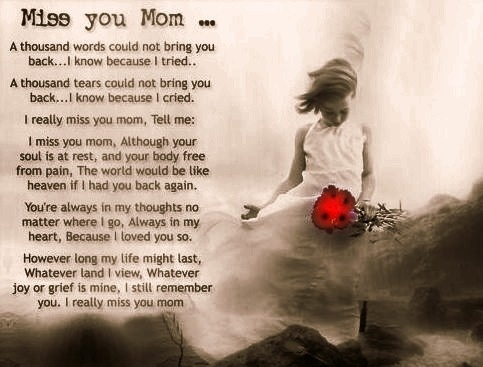e048d715a8c4298f635cde5682a0d26e remembering mom mothers day best 25 miss you mom quotes ideas on pinterest mom i miss you,Miss You Mom Meme