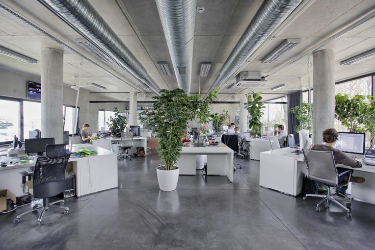 industrial office design ideas. plants give our industrial office a cozy feel pinterest and design ideas i